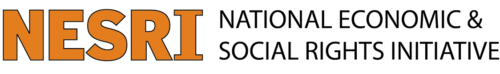 Logo of the National and Economic Social Rights Initiative